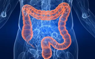 Симптомы зашлакованный кишечник