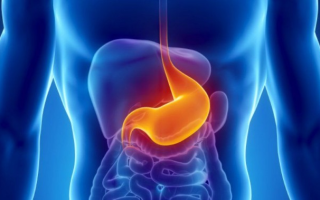 Точечные геморрагии в желудке