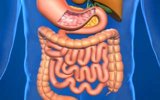 Сильное брожение в кишечнике