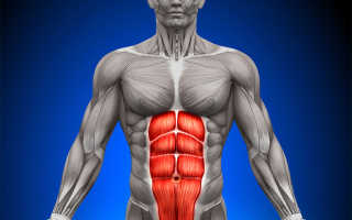 Сводит мышцы живота у мужчин