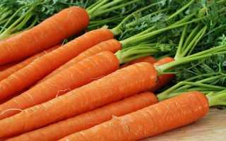Свежая морковь при панкреатите