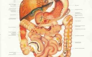Чистка кишечника за и против