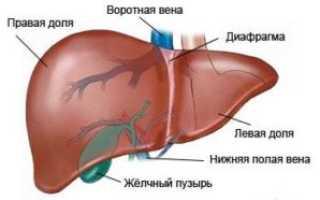 Печеночный анализ крови повышен
