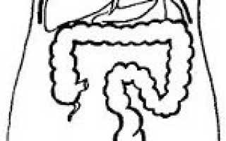 У ребенка удлиненный кишечник